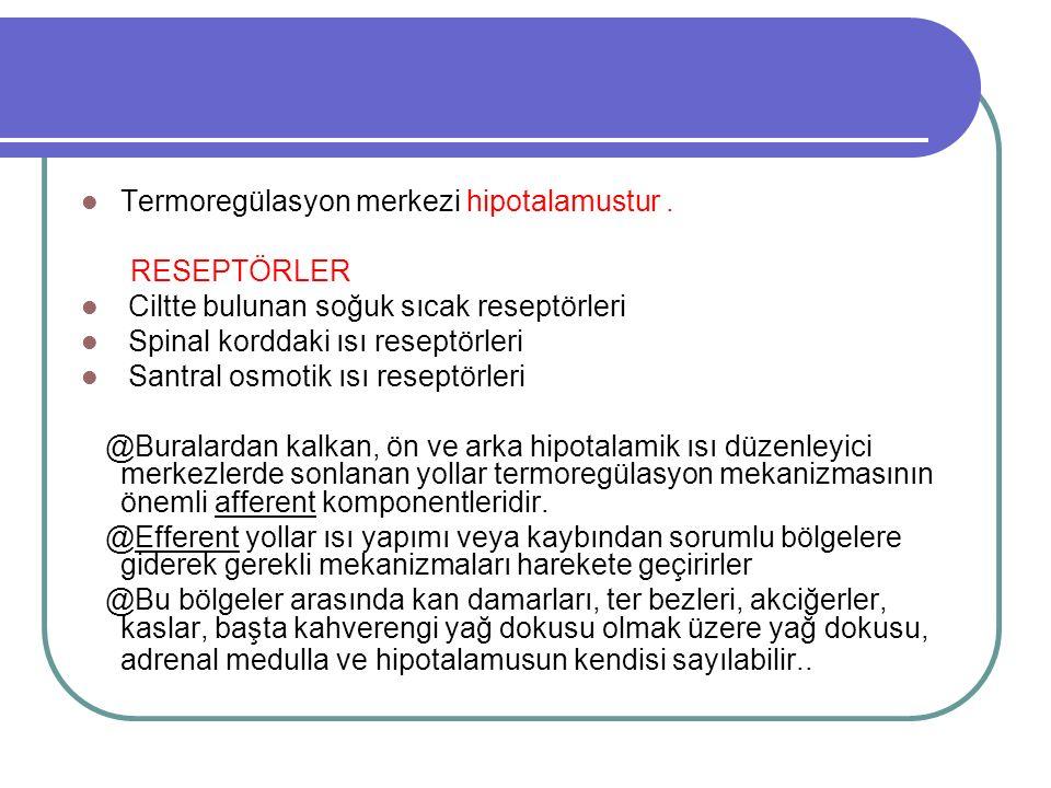 Termoregülasyon merkezi hipotalamustur .