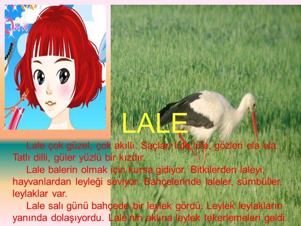 LALE Lale çok güzel, çok akıllı. Saçları lüle lüle, gözleri ela ela. Tatlı dilli, güler yüzlü bir kızdır.