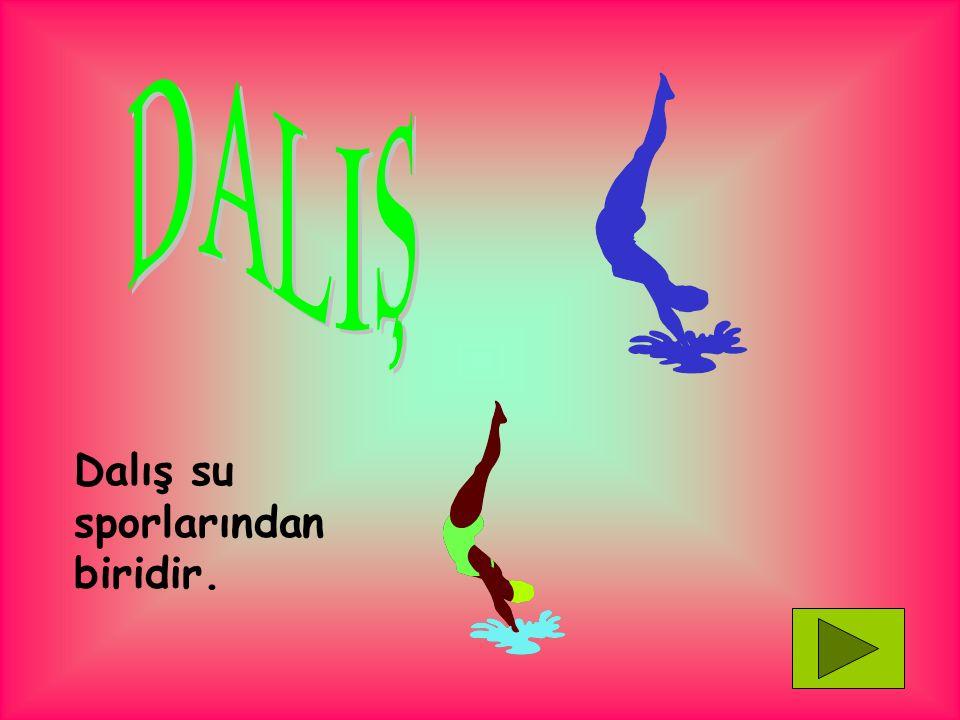 DALIŞ Dalış su sporlarından biridir.