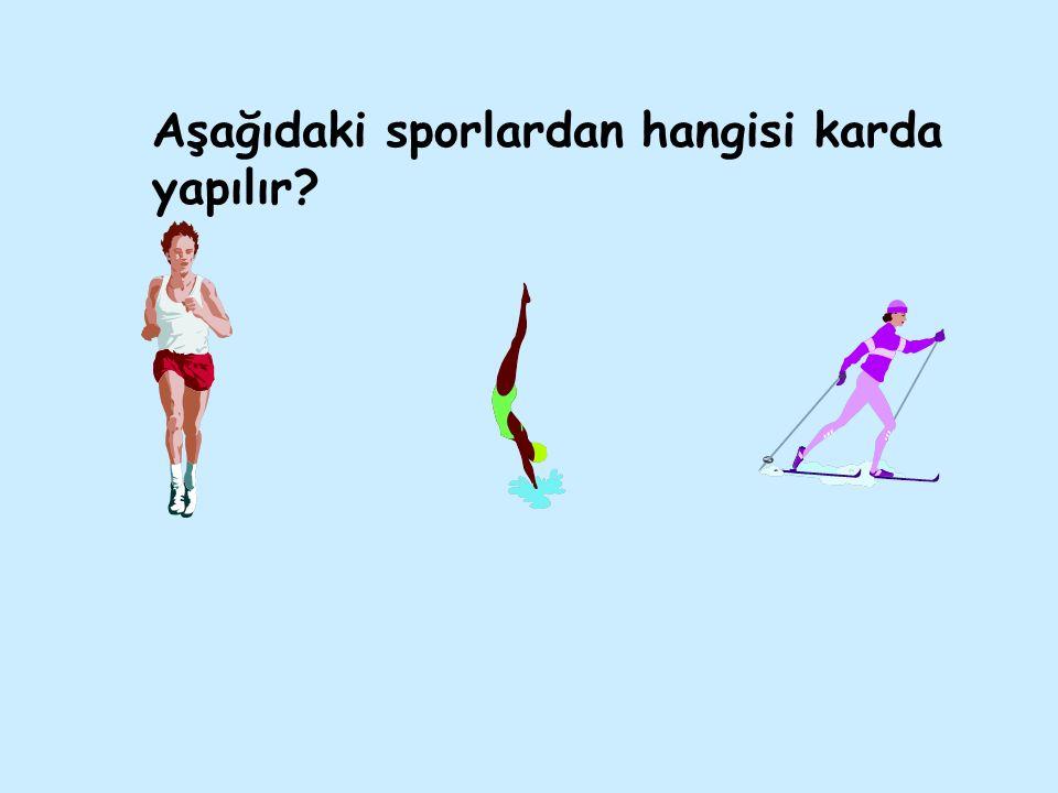 Aşağıdaki sporlardan hangisi karda yapılır