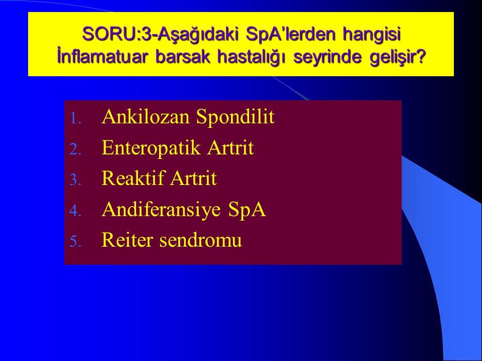 Ankilozan Spondilit Enteropatik Artrit Reaktif Artrit
