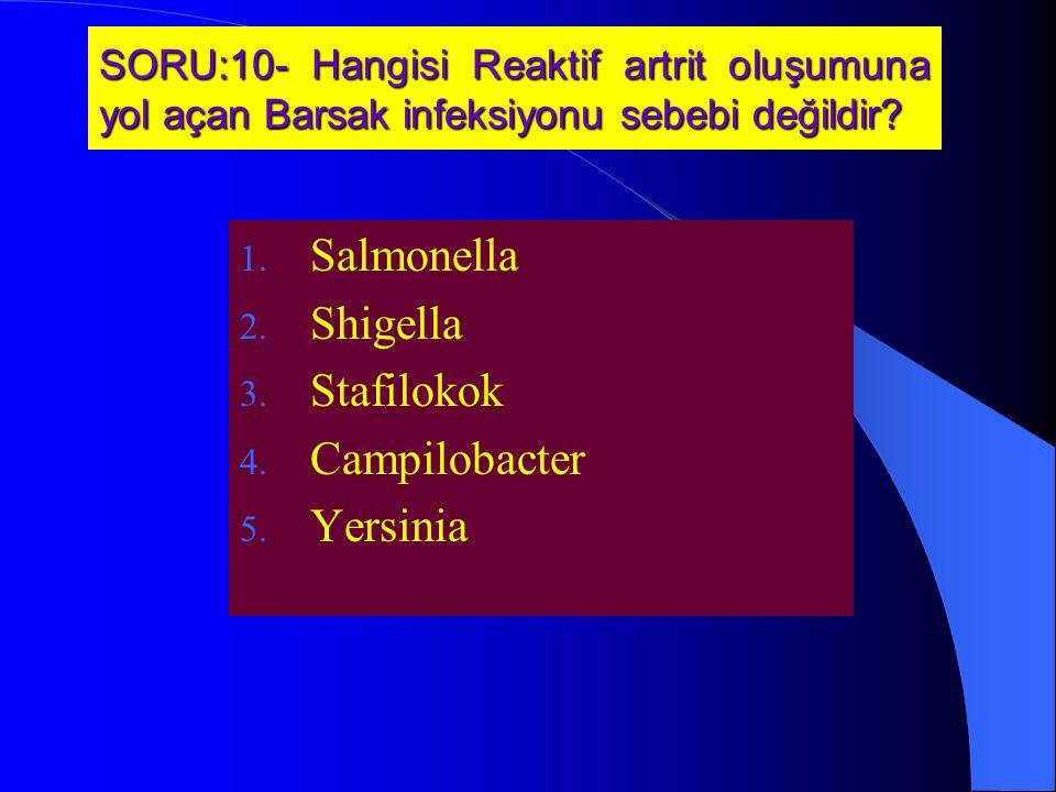 Salmonella Shigella Stafilokok Campilobacter Yersinia