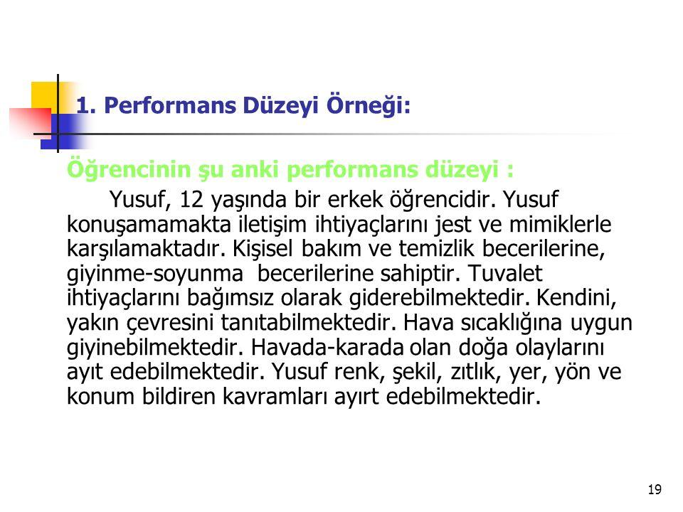 1. Performans Düzeyi Örneği: