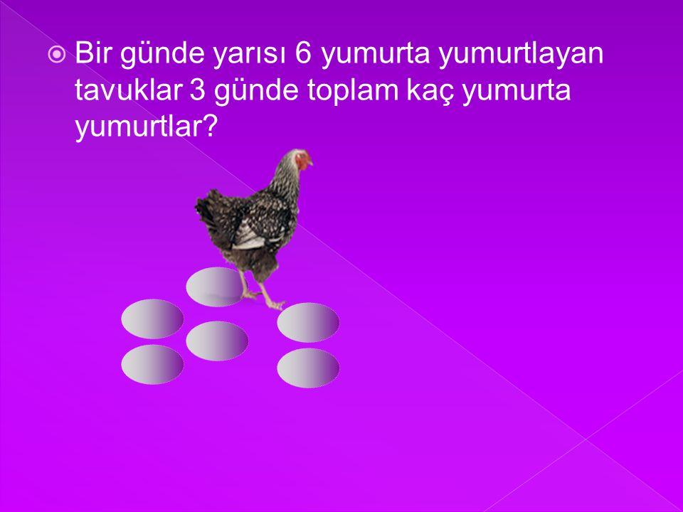 Bir günde yarısı 6 yumurta yumurtlayan tavuklar 3 günde toplam kaç yumurta yumurtlar