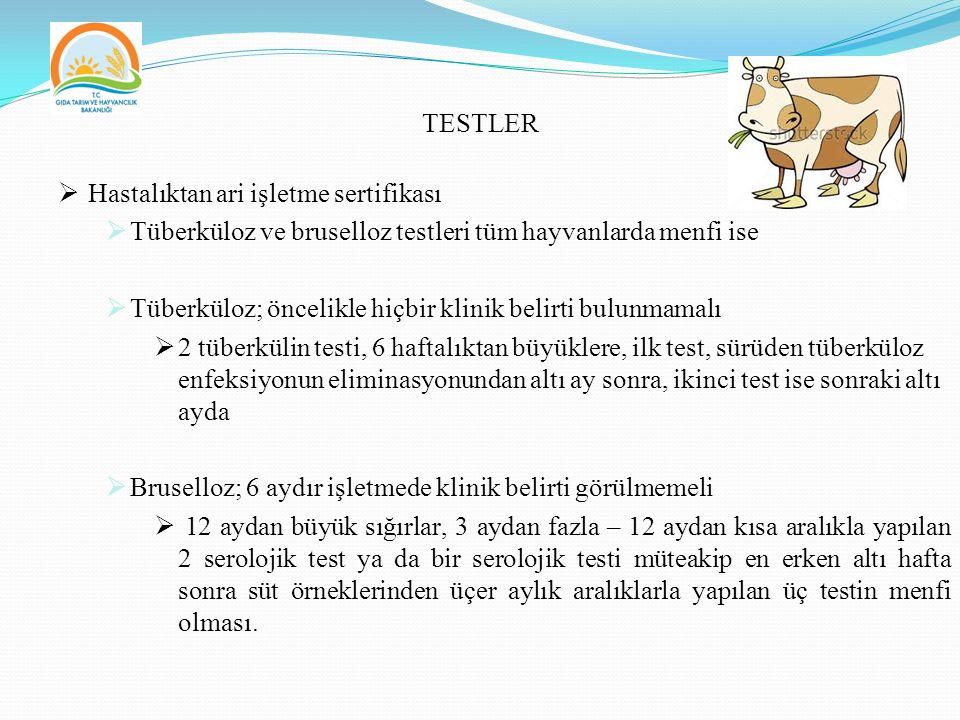 TESTLER Hastalıktan ari işletme sertifikası. Tüberküloz ve bruselloz testleri tüm hayvanlarda menfi ise.