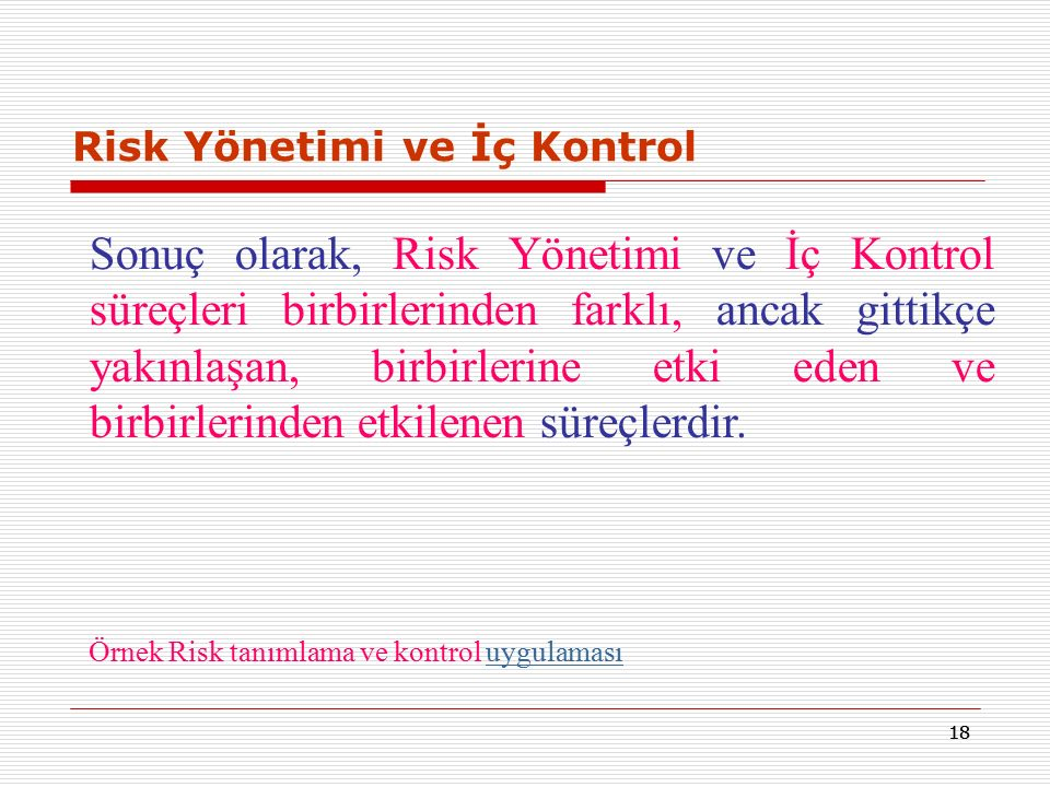 Risk Yönetimi ve İç Kontrol
