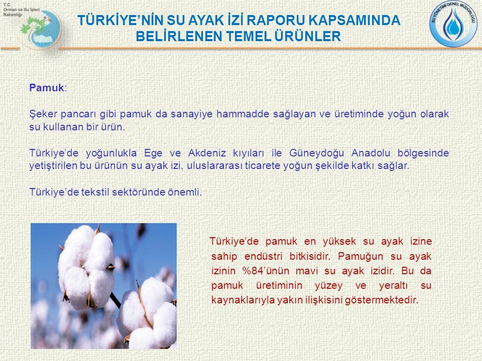 TÜRKİYE'NİN SU AYAK İZİ RAPORU KAPSAMINDA BELİRLENEN TEMEL ÜRÜNLER