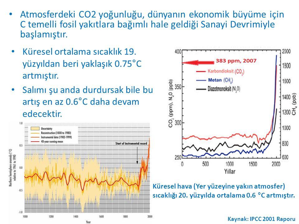 Atmosferdeki CO2 yoğunluğu, dünyanın ekonomik büyüme için C temelli fosil yakıtlara bağımlı hale geldiği Sanayi Devrimiyle başlamıştır.