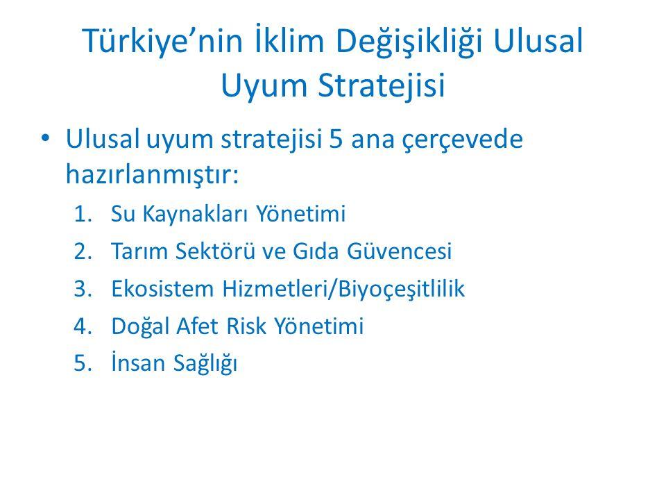 Türkiye'nin İklim Değişikliği Ulusal Uyum Stratejisi