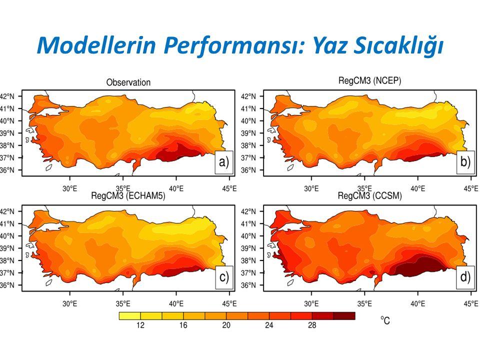 Modellerin Performansı: Yaz Sıcaklığı