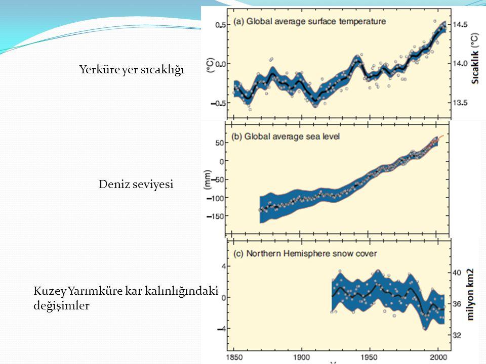Yerküre yer sıcaklığı Deniz seviyesi Kuzey Yarımküre kar kalınlığındaki değişimler