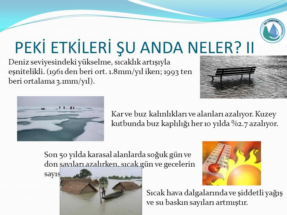 PEKİ ETKİLERİ ŞU ANDA NELER II