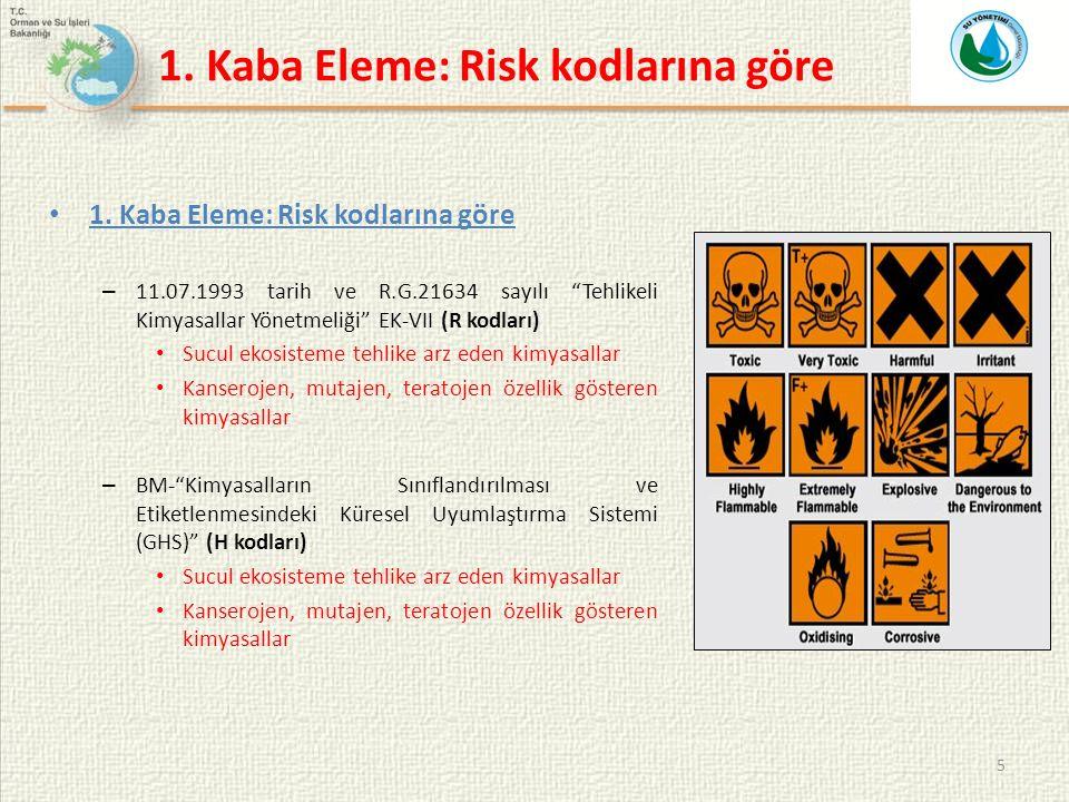 1. Kaba Eleme: Risk kodlarına göre