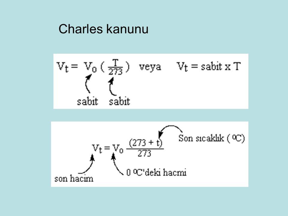 Charles kanunu 101