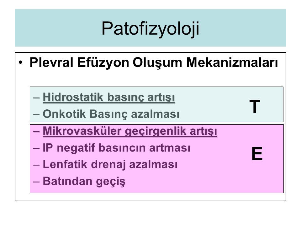 Patofizyoloji T E Plevral Efüzyon Oluşum Mekanizmaları