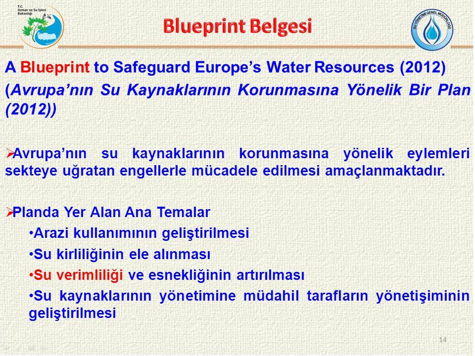 Blueprint Belgesi A Blueprint to Safeguard Europe's Water Resources (2012) (Avrupa'nın Su Kaynaklarının Korunmasına Yönelik Bir Plan (2012))