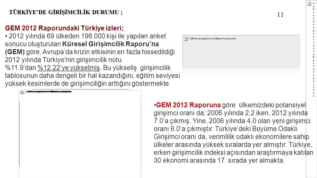 11 GEM 2012 Raporundaki Türkiye izleri;