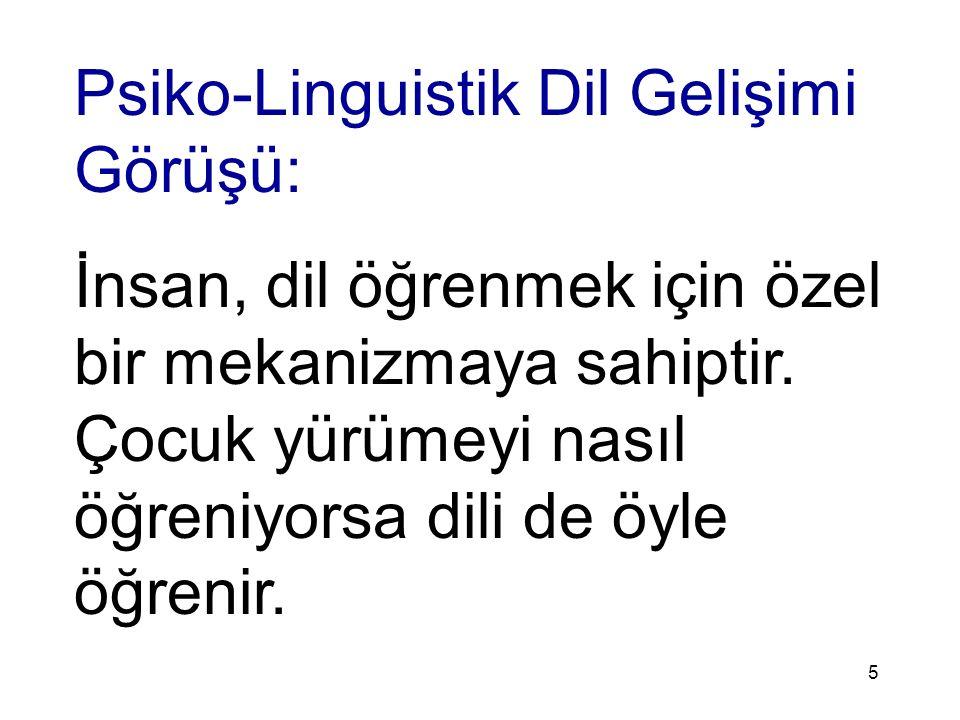 Psiko-Linguistik Dil Gelişimi Görüşü: