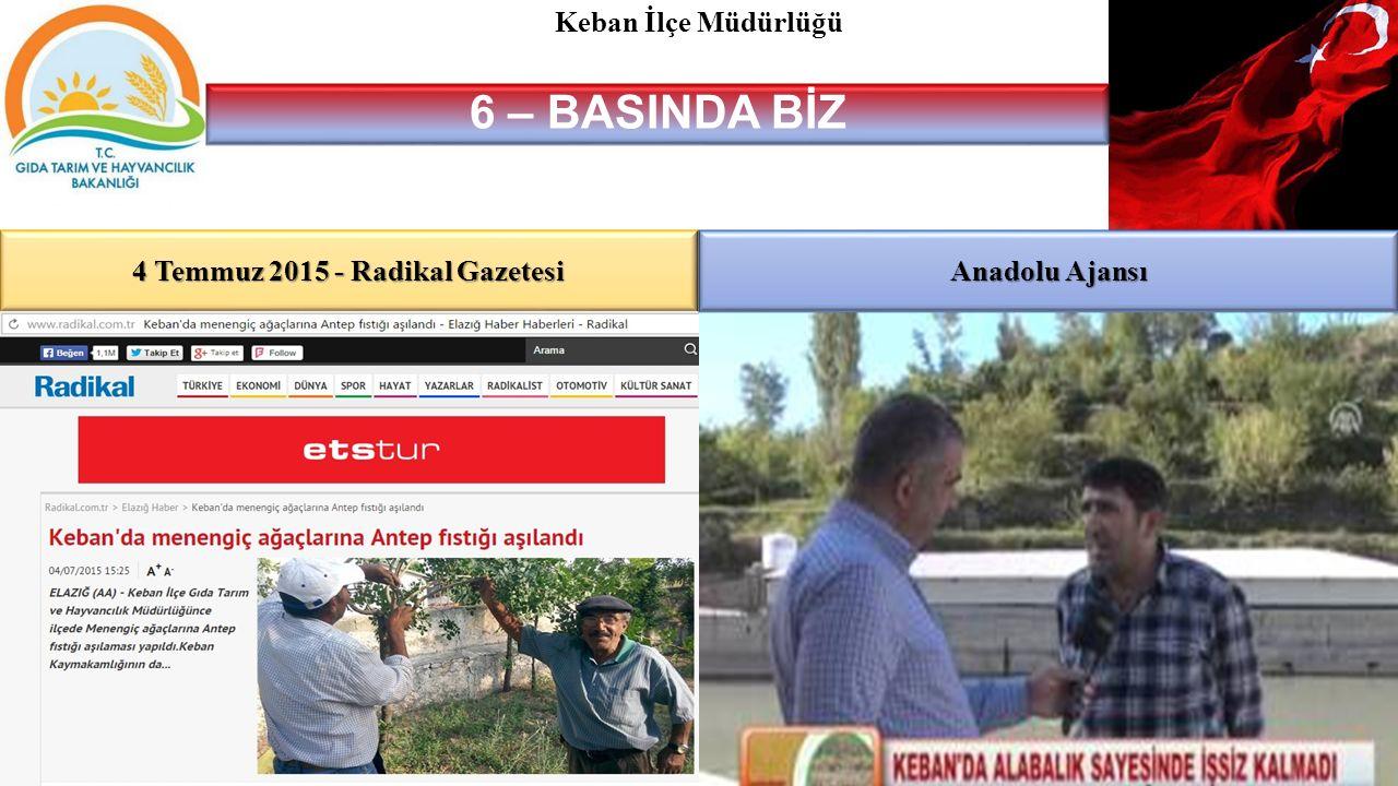4 Temmuz 2015 - Radikal Gazetesi