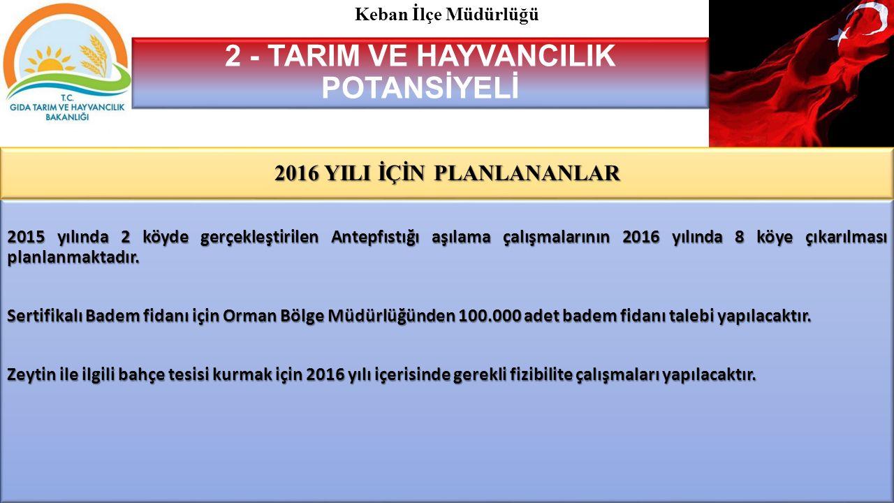 2 - TARIM VE HAYVANCILIK POTANSİYELİ 2016 YILI İÇİN PLANLANANLAR
