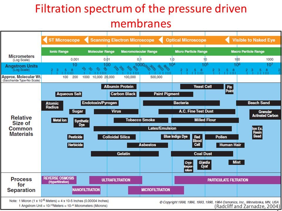 Filtration spectrum of the pressure driven membranes