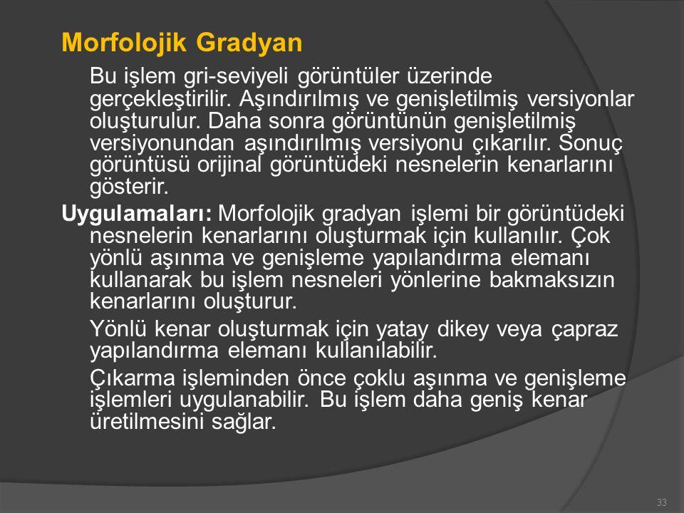 Morfolojik Gradyan