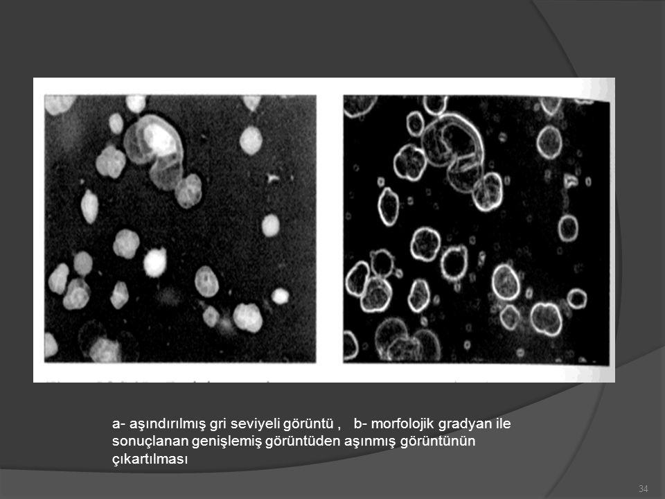 a- aşındırılmış gri seviyeli görüntü , b- morfolojik gradyan ile sonuçlanan genişlemiş görüntüden aşınmış görüntünün çıkartılması