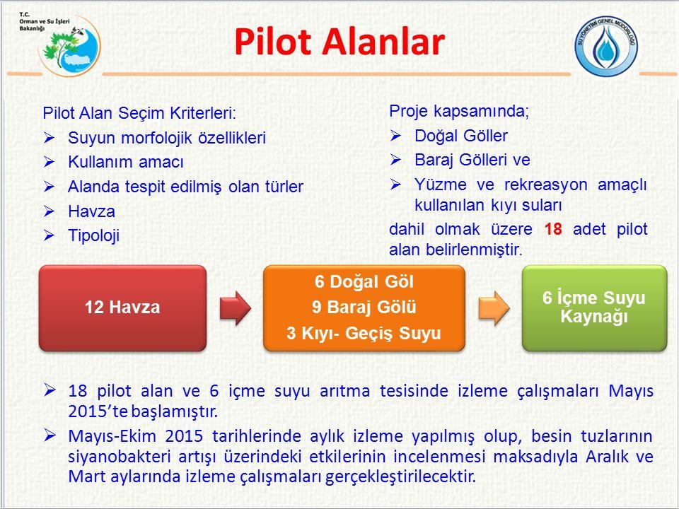 Pilot Alanlar Pilot Alan Seçim Kriterleri: Suyun morfolojik özellikleri. Kullanım amacı. Alanda tespit edilmiş olan türler.
