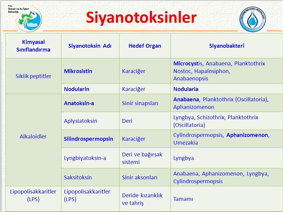 Kimyasal Sınıflandırma