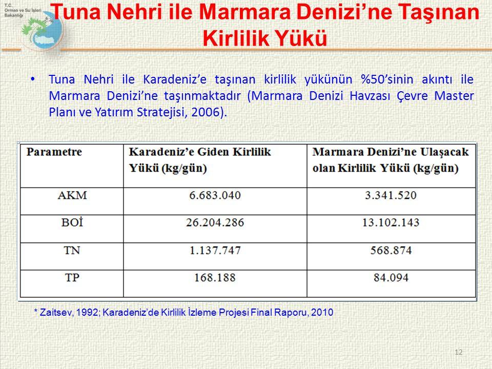 Tuna Nehri ile Marmara Denizi'ne Taşınan Kirlilik Yükü