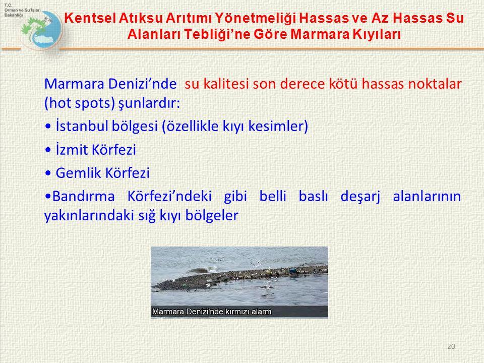 • İstanbul bölgesi (özellikle kıyı kesimler) • İzmit Körfezi