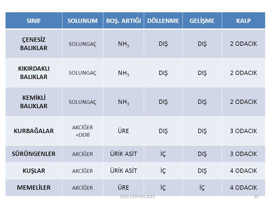 SINIF SOLUNUM BOŞ. ARTIĞI DÖLLENME GELİŞME KALP ÇENESİZ BALIKLAR NH3