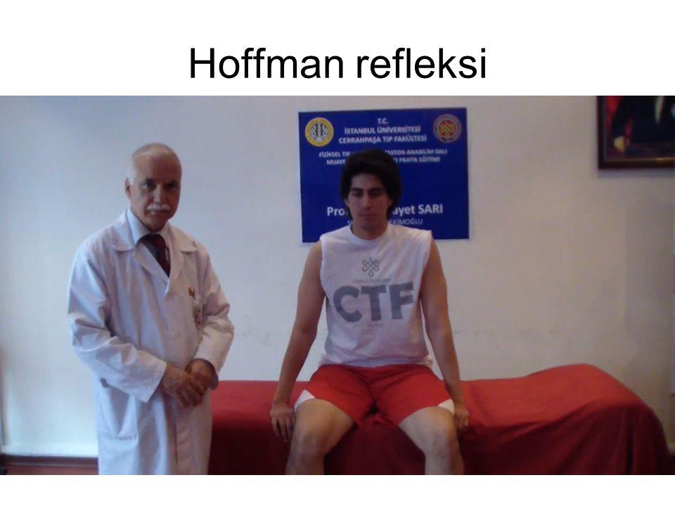 Hoffman refleksi
