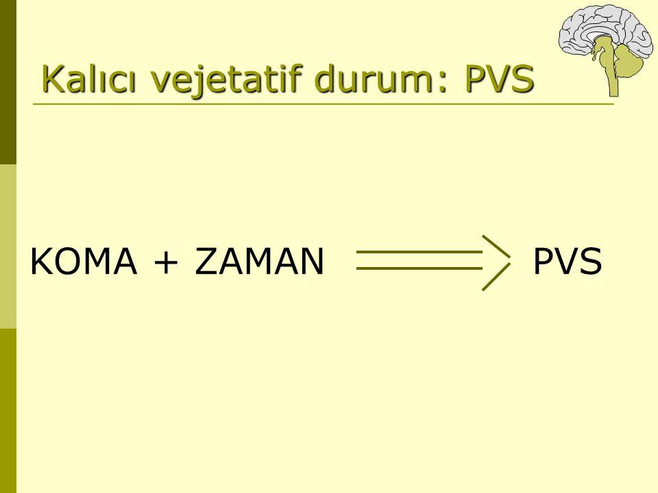 Kalıcı vejetatif durum: PVS