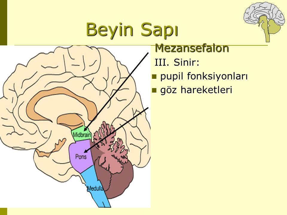 Beyin Sapı Mezansefalon III. Sinir: pupil fonksiyonları