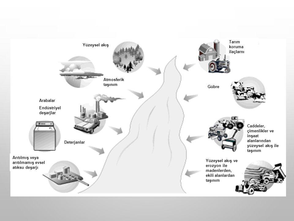 Deterjanlar Arabalar. Endüstriyel deşarjlar. Yüzeysel akış. Arıtılmış veya arıtılmamış evsel atıksu deşarjı.