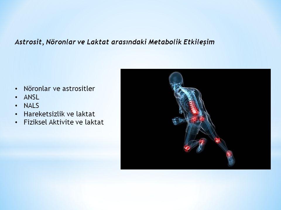 Astrosit, Nöronlar ve Laktat arasındaki Metabolik Etkileşim