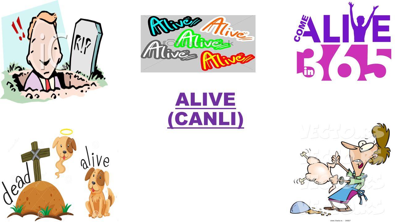 ALIVE (CANLI)