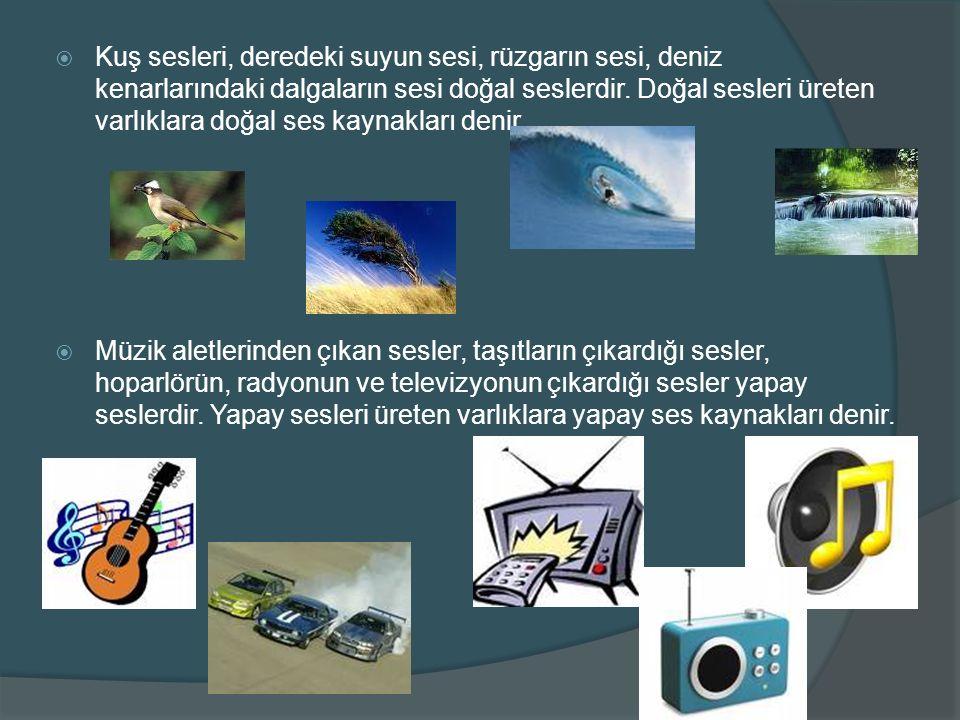 Kuş sesleri, deredeki suyun sesi, rüzgarın sesi, deniz kenarlarındaki dalgaların sesi doğal seslerdir. Doğal sesleri üreten varlıklara doğal ses kaynakları denir.