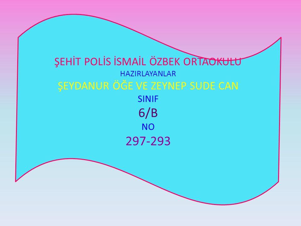 6/B 297-293 ŞEHİT POLİS İSMAİL ÖZBEK ORTAOKULU
