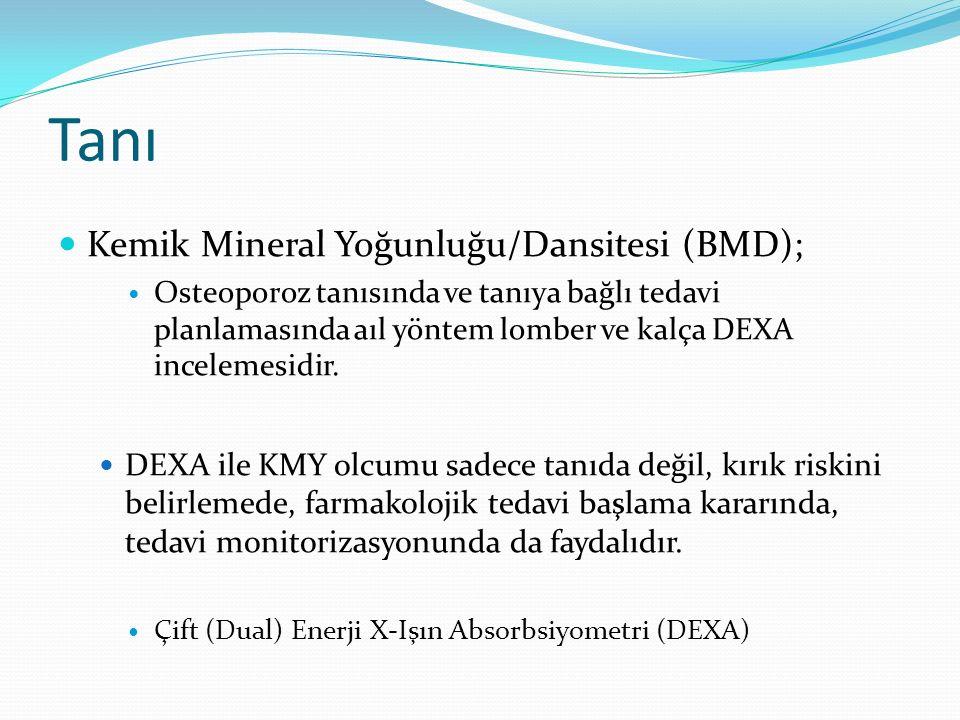 Tanı Kemik Mineral Yoğunluğu/Dansitesi (BMD);