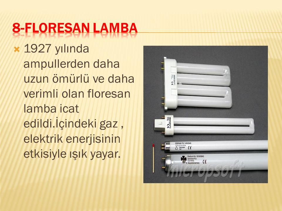 8-FLORESAN LAMBA