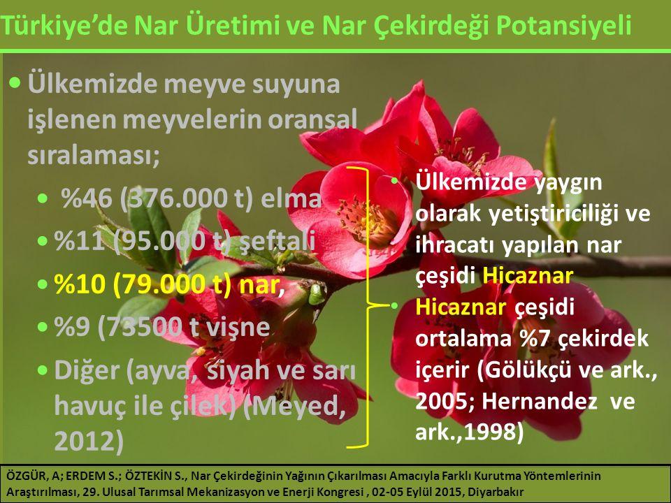Türkiye'de Nar Üretimi ve Nar Çekirdeği Potansiyeli