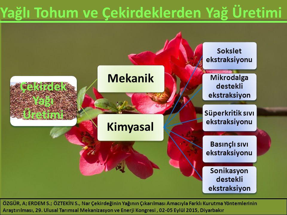 Yağlı Tohum ve Çekirdeklerden Yağ Üretimi