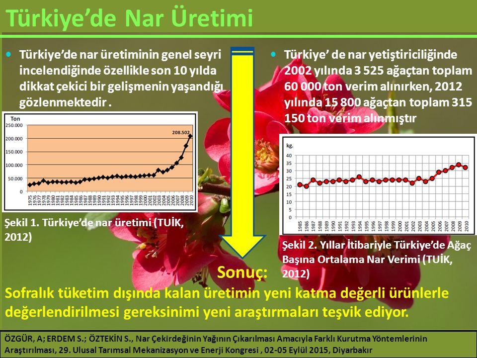Türkiye'de Nar Üretimi
