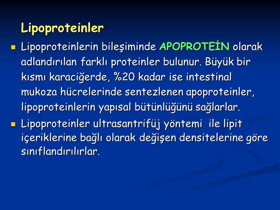 Lipoproteinler