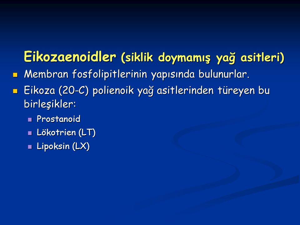 Eikozaenoidler (siklik doymamış yağ asitleri)