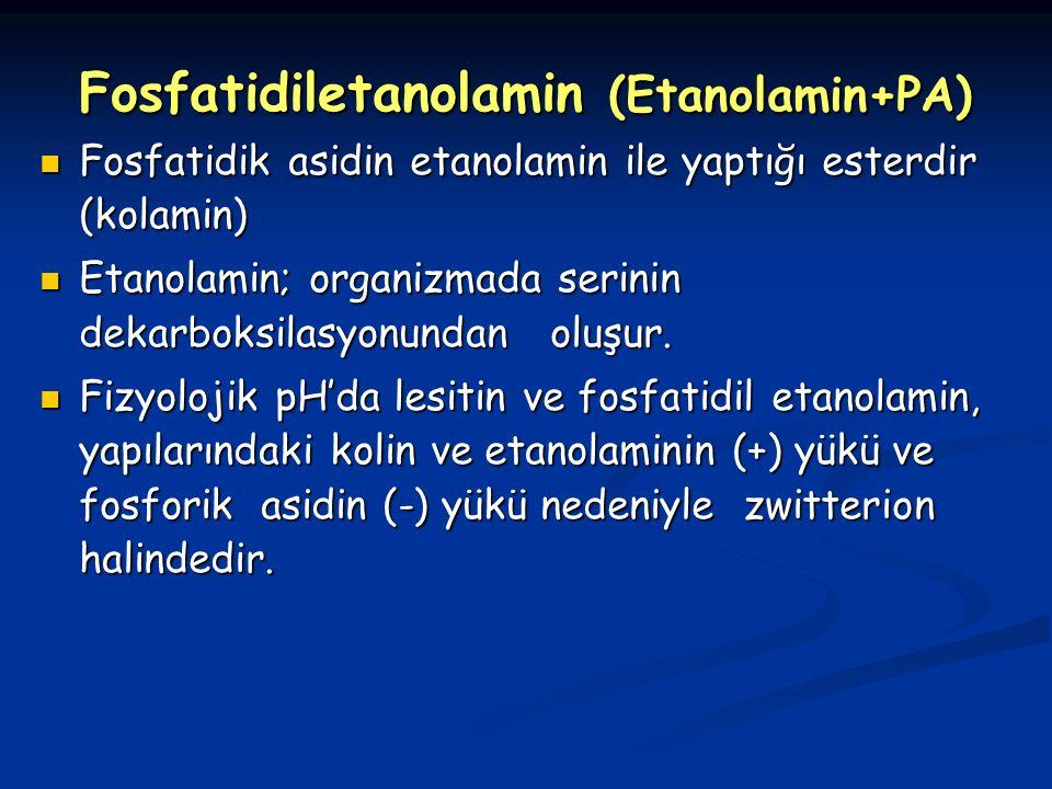 Fosfatidiletanolamin (Etanolamin+PA)