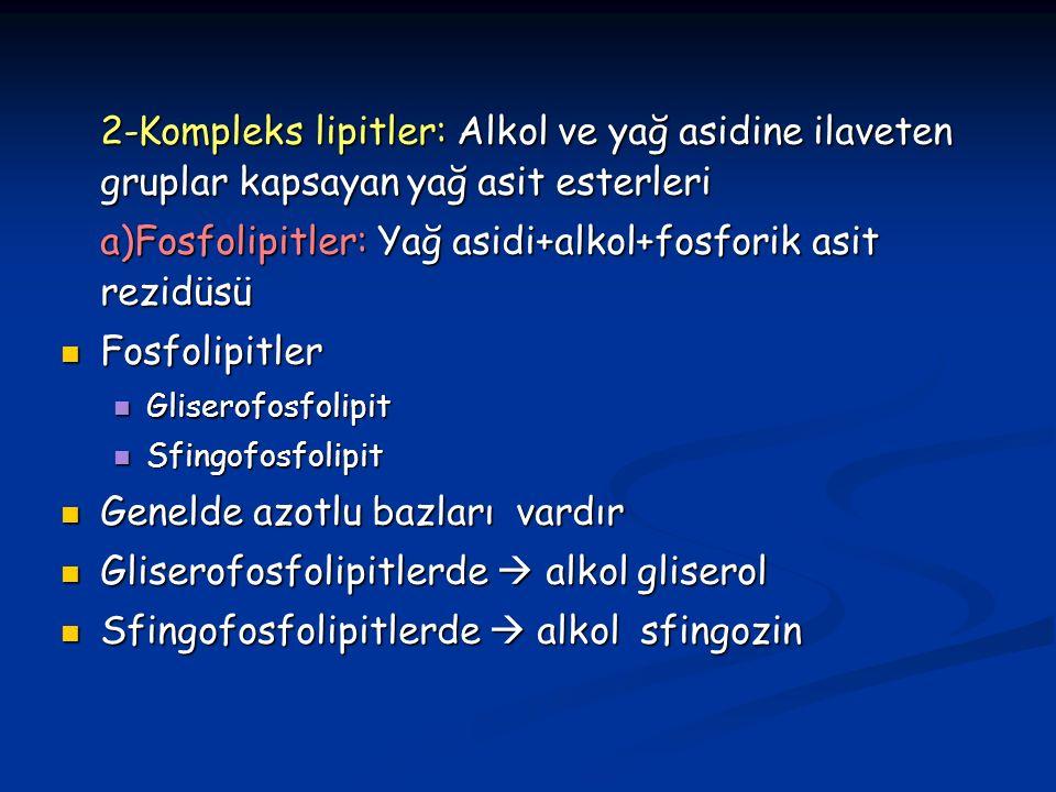 a)Fosfolipitler: Yağ asidi+alkol+fosforik asit rezidüsü Fosfolipitler