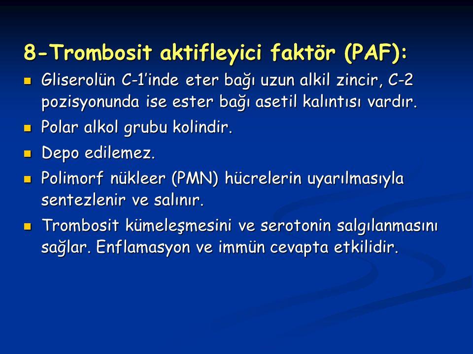 8-Trombosit aktifleyici faktör (PAF):